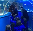Reception Blue Reef Aquarium visit